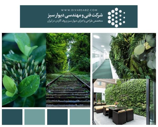خصوصیات دیوار سبز خزه ای