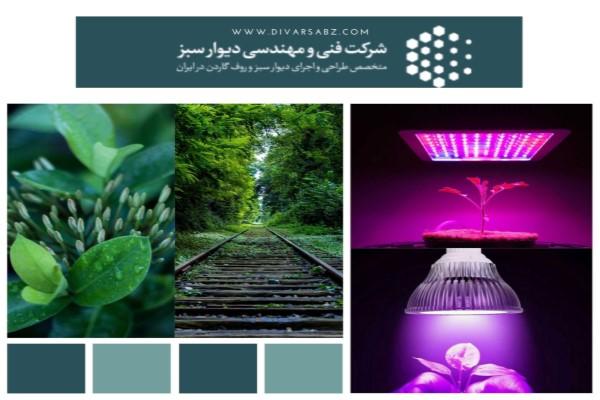 لامپ پروژکتور رشد گیاه