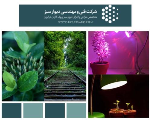 لامپ کم مصرف برای رشد گیاه